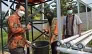 Bantuan Pengairan PLN Peduli, Hilangkan Kecemasan Petani Desa Sumber Jaya Jati Mulyo Saat Kemarau
